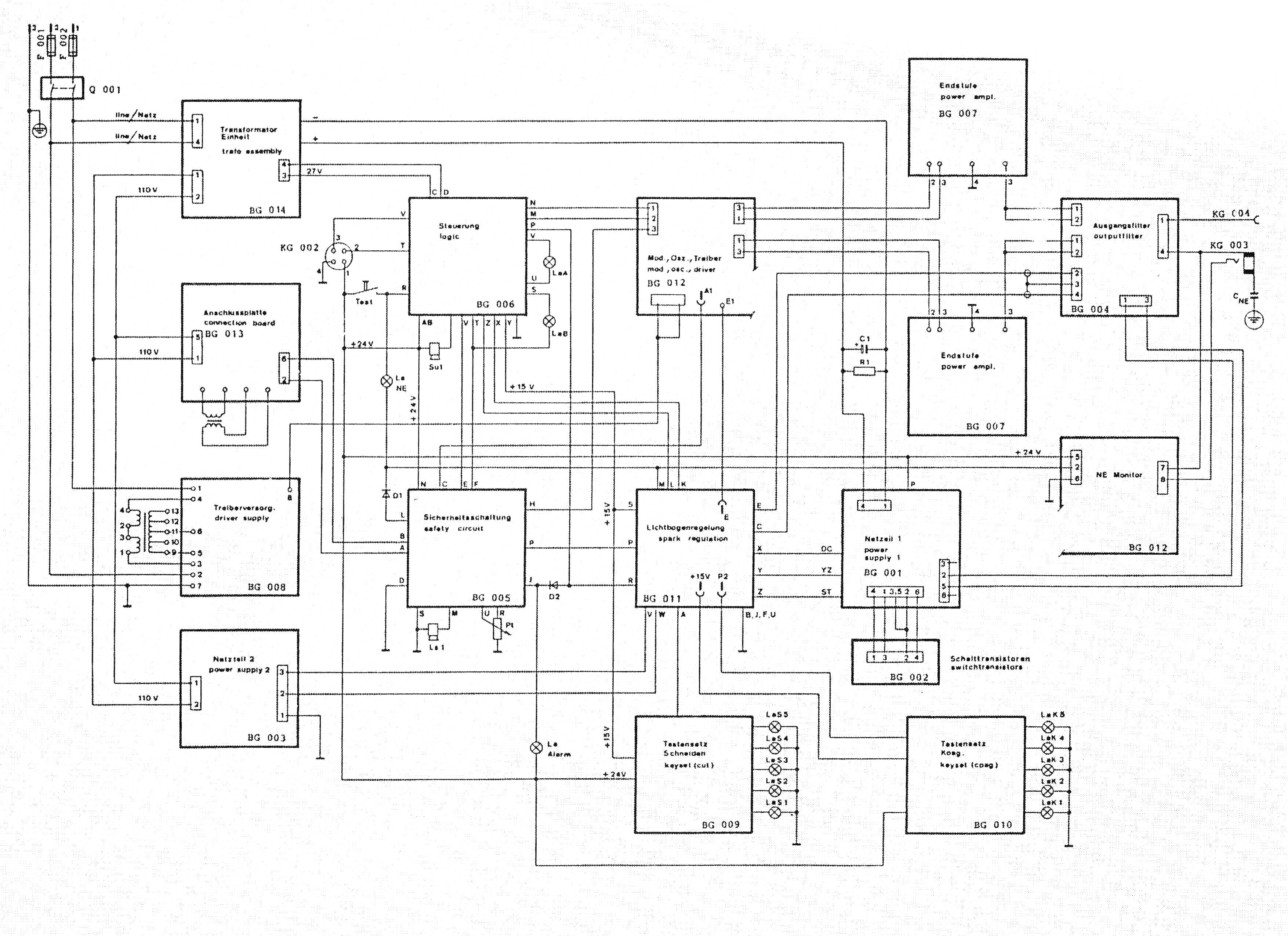 Схема строения вегетативного тела растения